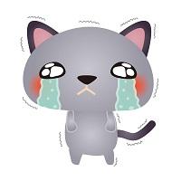 猫,下痢の原因