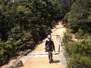 弥山登山道