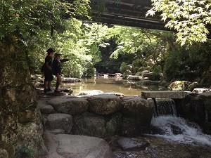 紅葉谷公園の川