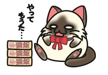 猫,またたび,食欲増進-min