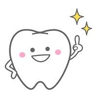 ツルツルの歯