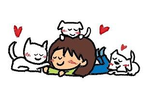 猫,多頭飼い