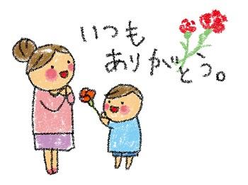 母の日,カーネーション,3