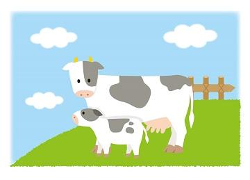 低脂肪牛乳と普通の牛乳の違い,2