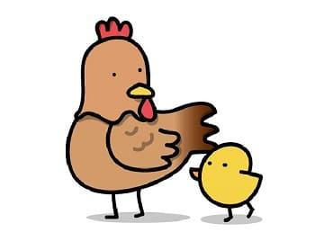赤い卵と白い卵,違い-min