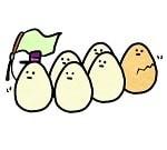 赤い卵と白い卵の違い1-min