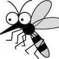 蚊,1-min