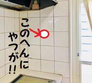 キッチンの壁-min