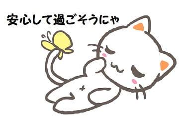 猫-min