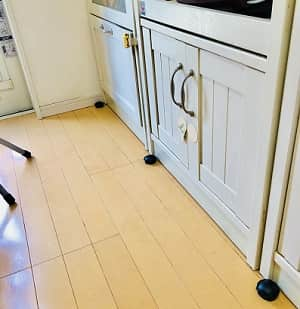キッチン,ゴキブリ対策,猫-min