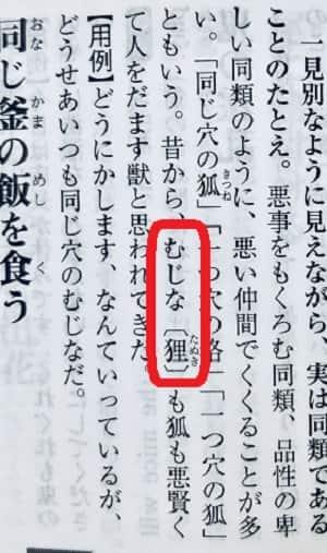 同じ穴のムジナ,タヌキ-min