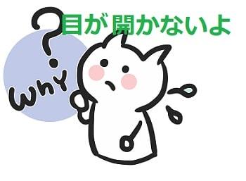 猫,片目がおかしい-min