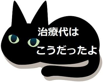 猫,目が半開き,治療代-min