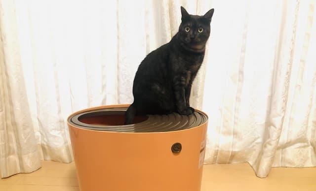 アイリスオーヤマ,上から猫トイレ,使い方